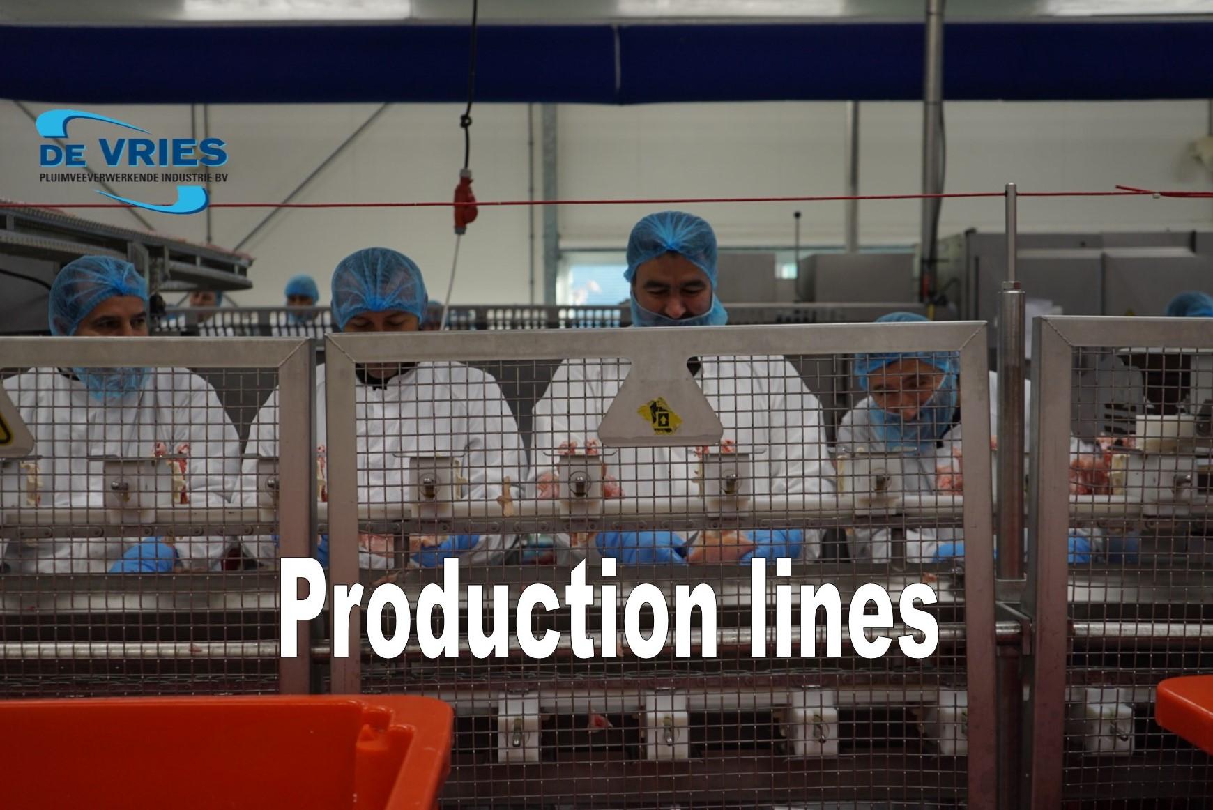 http://devriesnijkerk.nl/wp-content/uploads/2017/03/Production-lines.jpg